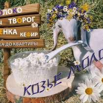 Козье молоко от породистых коз, в Тольятти