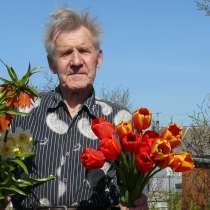 Сергей, 79 лет, хочет познакомиться, в Кингисеппе