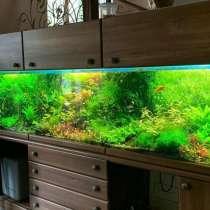 Изготовление аквариумов, в г.Алматы