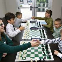 Bortniks School of Chess. Новая школа шахмат в Майами, в г.Hallandale Beach