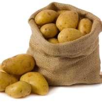 Картофель, в Краснодаре