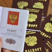 Помощь в получении гражданства РФ, РВП, ВНЖ, в Анне