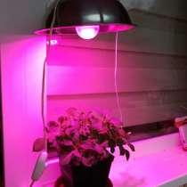 Фитосветильник на светодиодной лампе. Дешево, в Санкт-Петербурге