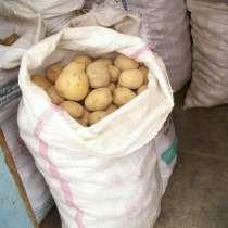 Картофель отборный, в Новосибирске
