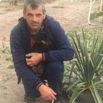 Vasiliy, 50 лет, хочет познакомиться – Знакомлюсь для с/о, в г.Васильков