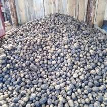 Картофель домашний, в Иркутске
