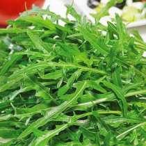 Руккола зелень, в Ногинске