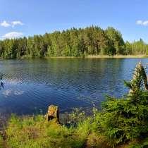 Экскурсия - поход по НП СМОЛЕНСКОЕ ПООЗЕРЬЕ из Смоленска, в Смоленске