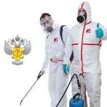 Уничтожение тараканов и клопов, насекомых и грызунов, в Челябинске
