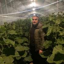 Фарид, 36 лет, хочет пообщаться, в Симферополе