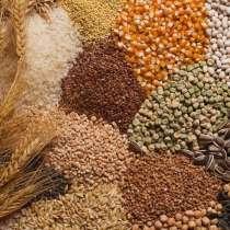 Зерно, комбикорма, отруби, жом, жмых, в Чебоксарах