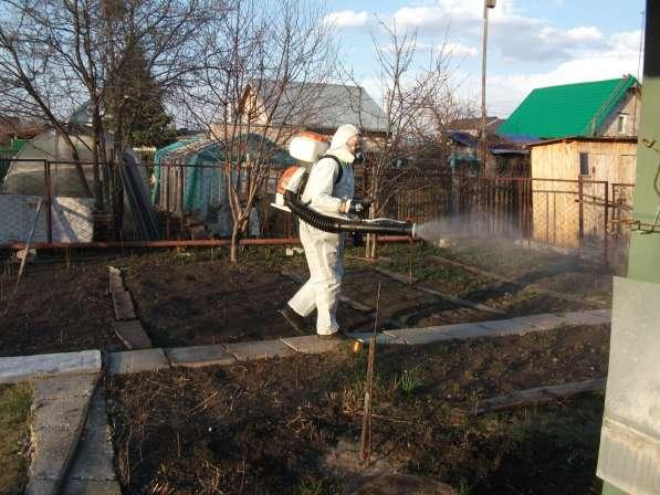 Уничтожение клещей, комаров и других насекомых