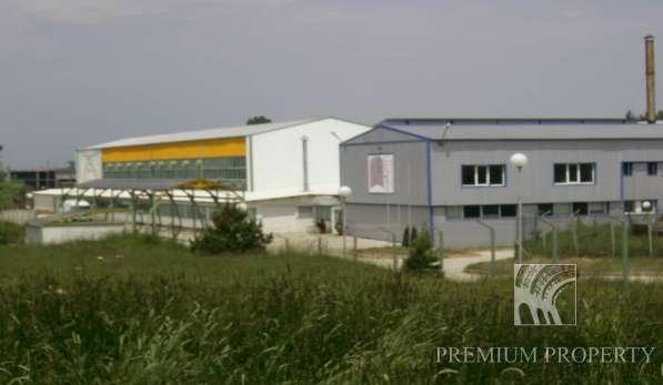 Заводов по производству замороженных продуктов