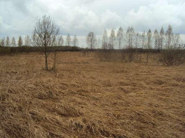 Продам земельные участок в Тверской области