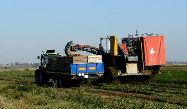 Прицеп тракторный Тонар ПТ7 в Москве фото 3