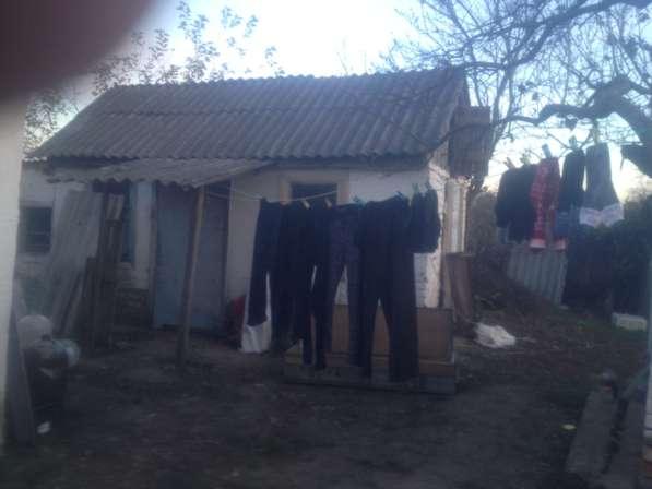 Домовладение хутор Раздольный Армавир в Армавире фото 11