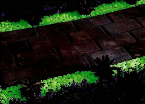 Светящаяся в темноте краска на основе люминофора ТАТ 33