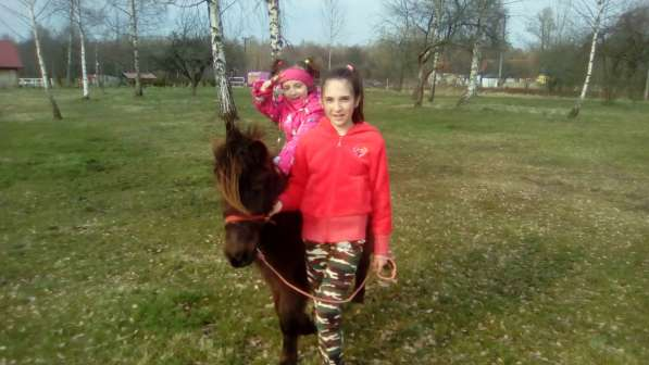 Верховая езда ребенка на пони. Полесск в Калининграде фото 5
