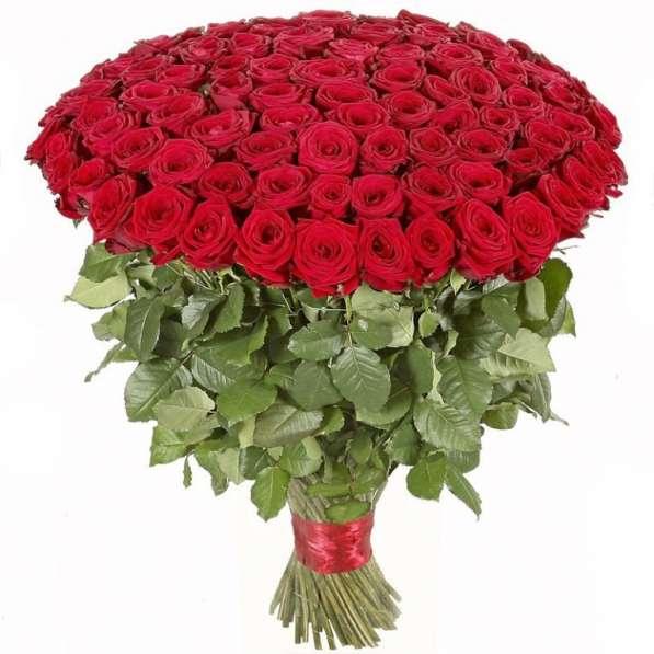 101 роза за 4500₽