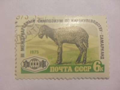 Марка 6 Копеек Самарканд 1975 год СССР Каракулеводство