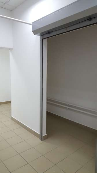 Продаю помещение свободного назначения 234 кв.м.в жилом доме в Санкт-Петербурге фото 13