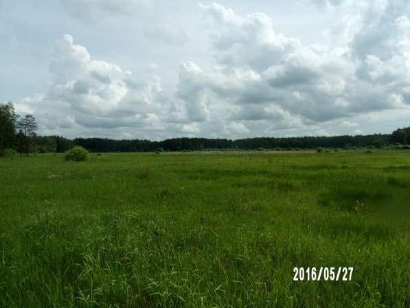 Сдам в аренду земли сельхозназначения в Коломне
