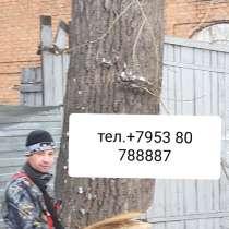 Спил'выкорчовование'вывоз деревьев, в Новосибирске