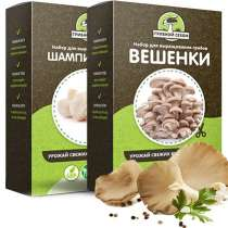 Набор для выращивания грибов Грибной Сезон, в Санкт-Петербурге