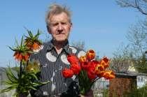 Сергей, 79 лет, хочет познакомиться, в г.Кингисепп