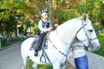 белый конь, в г.Алматы