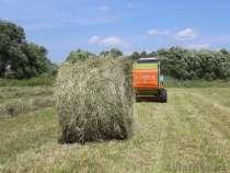 Продаю тюкованное сено, луговое с бобовыми растениями, в Барнауле