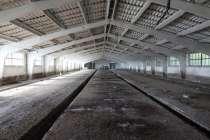 Продается свино-товарная ферма с земельным участком 19га, в Краснодаре