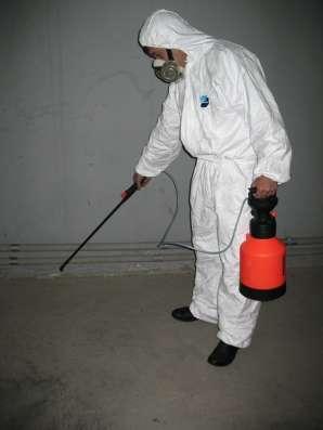 Дезинсекция (дезинфекция) уничтожение насекомых