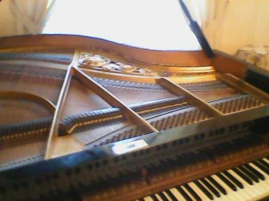 Мзыкальные инструменты