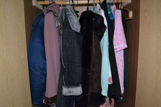 Женская одежда. Платья, юбки, кофты, куртки