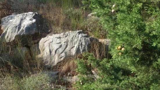 Продается участок в Гаспре район Большая Ялта в г. Симферополь Фото 3