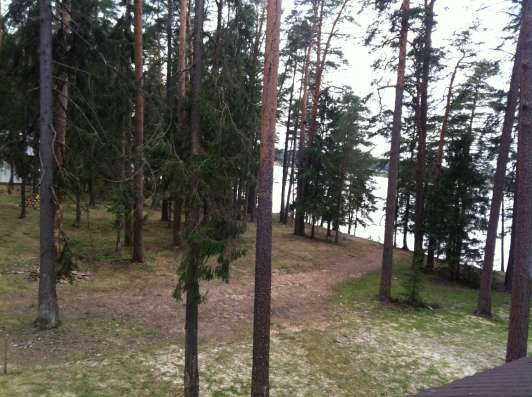 Коттедж на 1 береговой линии р. Волга. Сосны. д. Прислон