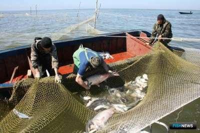 оборудование для рыбпрома