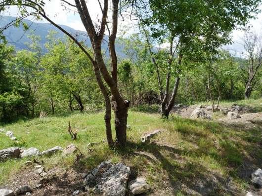 Земельный участок с видом на море и горы в Гаспре в г. Ялта Фото 1