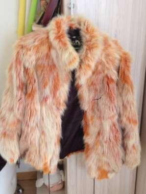 куртку песец