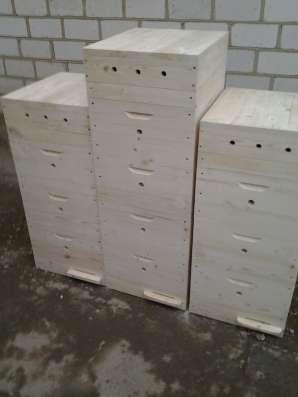 Пчелиные ульи от производителя в г. Нальчик Фото 4