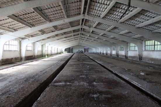 Продается свино-товарная ферма с земельным участком 19га