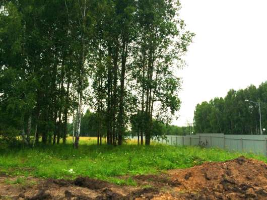 Продается земельный участок в Кашино