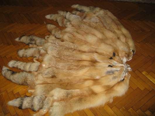 Шкура Сибирской рыжей лисы