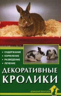 Декоративные кролики. Содержание. Кормление. Разведение