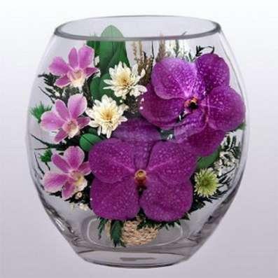 Орхидеи фиолетовые тёмные в Москве Фото 3